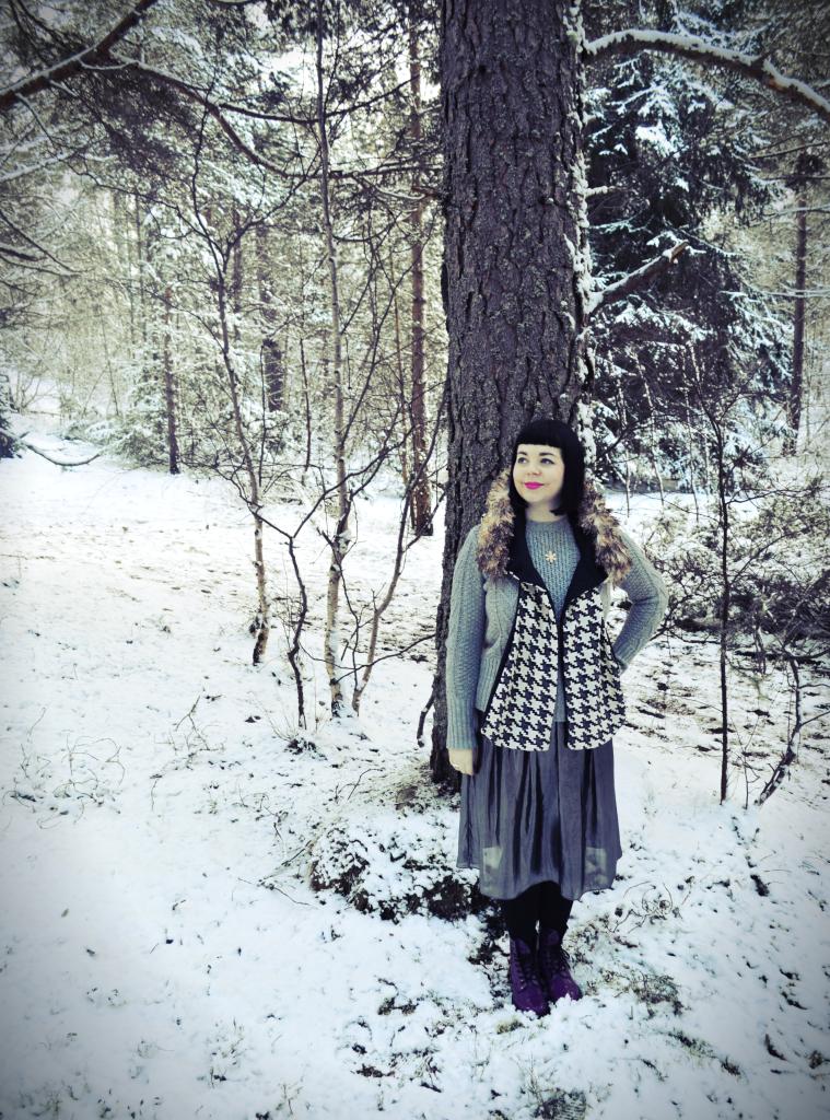 Endless Winter 5