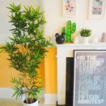 Faux Sure! Decorating with Artificial Plants
